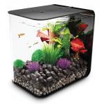 BiOrb Flow aquarium 30 liter LED zwart