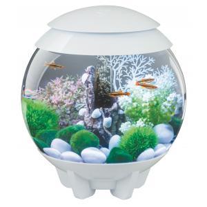 BiOrb Halo aquarium 15 liter MCR wit
