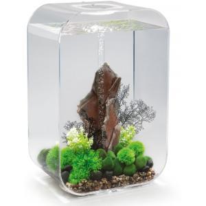 Biorb Life aquarium 60 liter MCR transparant