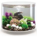 BiOrb Tube aquarium 35 liter LED wit