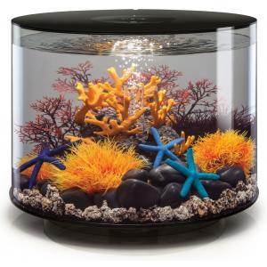 BiOrb Tube aquarium 35 liter LED zwart