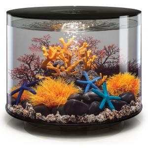 BiOrb Tube aquarium 35 liter MCR zwart