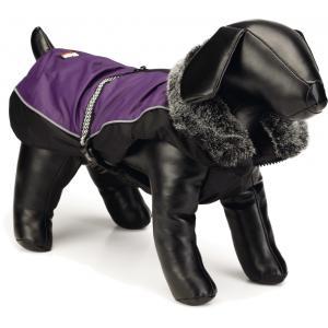 Nano hondenjas Aspen paars 25 cm