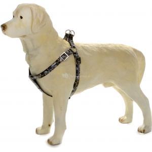 Hondentuig Envy 26-40cm zwart