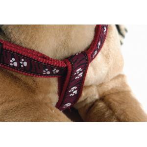 Hondentuig poot motief 40-70cm rood