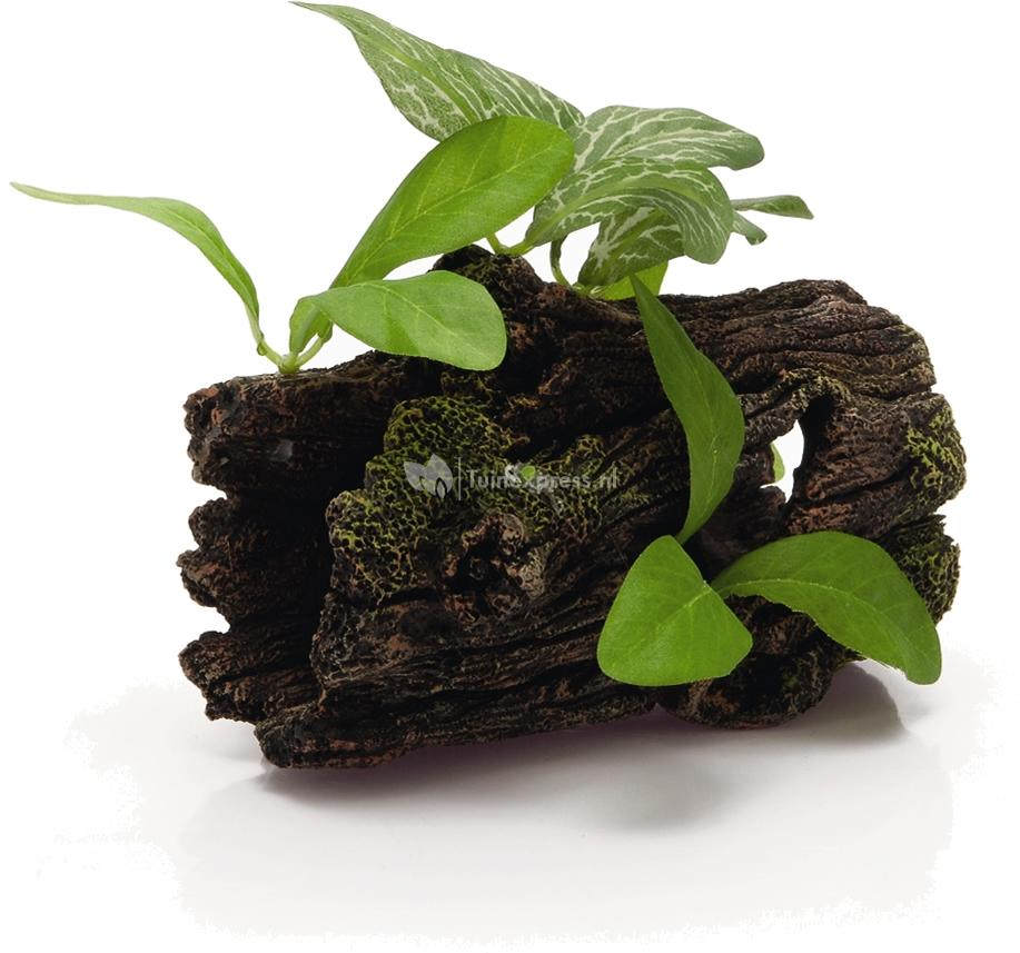 Beeztees dikke boomstronk met planten aquarium decoratie for Decoratie aquarium