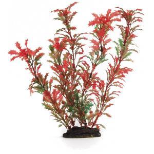 PLASTIC AQUA PLANT 86051R