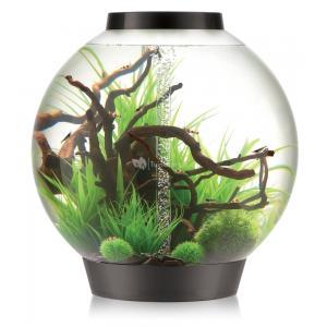 Dagaanbieding - BiOrb Classic aquarium 105 liter MCR zwart dagelijkse koopjes