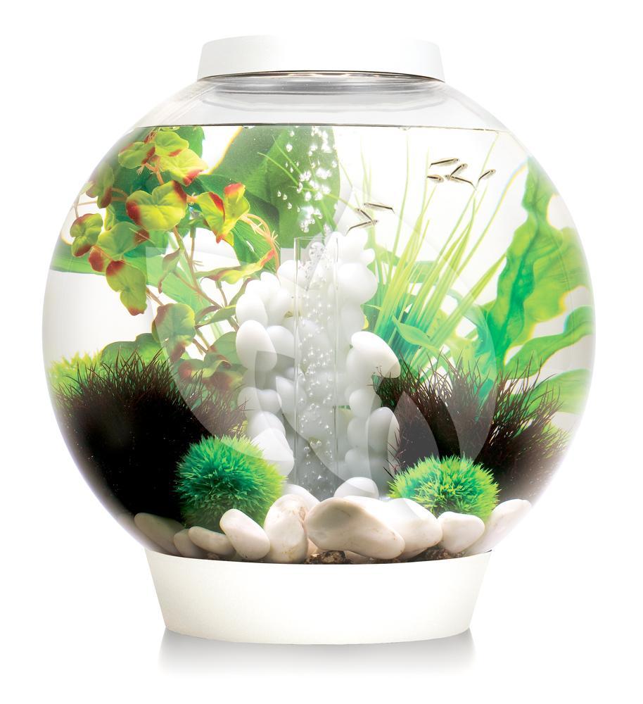 biorb classic aquarium 15 liter led wit. Black Bedroom Furniture Sets. Home Design Ideas