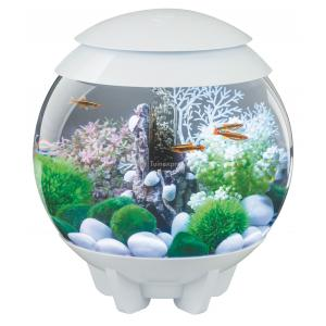 BiOrb Halo aquarium 30 liter LED maanlicht wit