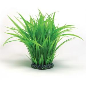 BiOrb grasring groot groen aquarium decoratie